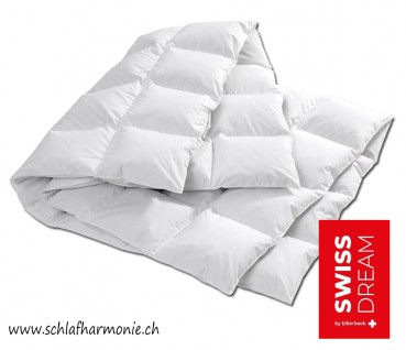 Duvet Swiss DREAM Caro CLC 90 Superlicht