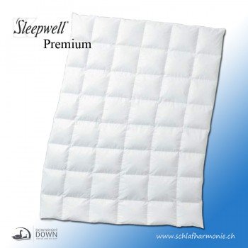Sleepwell Premium  Winter Duvet - 100% Entendaune